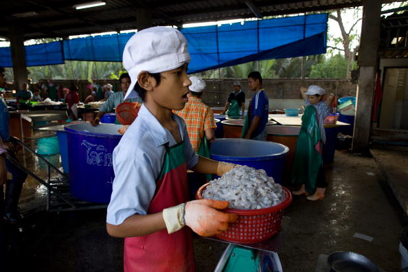 MAHACHAI, THAILAND: A young Burmese migrant worker stands in line at a shrimp factory to weigh the cleaned shrimp. Photo by Paula Bronstein /Getty Images