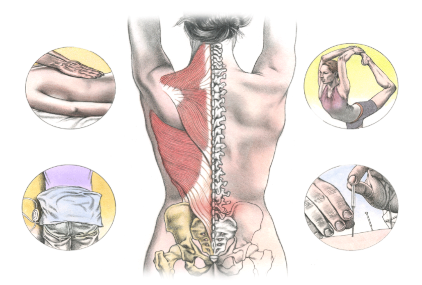 New Treatment for Back Pain – You!